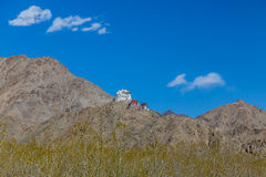 Leh-Palast und Kloster Namgyal Tsemo, Leh, Ladakh Lizenzfreies Stockfoto