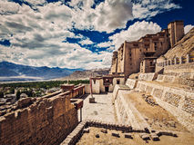 Leh slott, Ladakh, Indien Royaltyfria Bilder