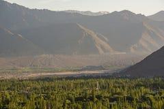 Leh-Stadt mit Sonnenuntergang von der Spitze Lizenzfreies Stockbild