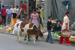Leh street market Stock Photos