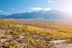 Leh village in northen India Royalty Free Stock Photos