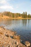 Река Йеллоустоун около речных порогов Lehardy в национальном парке Йеллоустона в Вайоминге Соединенных Штатах стоковое фото