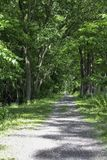 Lehigh Valley Trail in the summer. Hiking and biking trail in New York State. Part of the 90 mile trail in Scottville, NY royalty free stock image