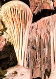 Lehman grottor #2 Arkivbild