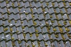 Lehmfliesen auf neding Spitzenwartung des Dachs lizenzfreie stockfotografie