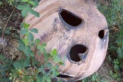 Lehmkürbislaterne im Garten Stockfoto