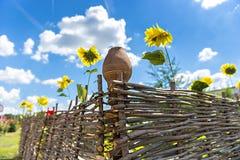 Lehmkrug auf einem Bretterzaun mit Sonnenblumen Stockfoto