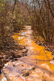 Lehmwasserlauf im Providence-Schlucht-Nationalpark, Georgia, USA Lizenzfreie Stockbilder