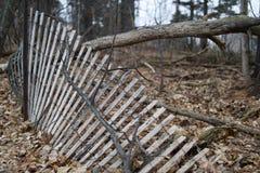Lehnender und fallender Waldzaun stockfoto