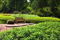 Lehnsessel im schönen Garten Lizenzfreies Stockbild