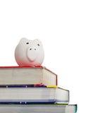 Lehrbücher mit einer weißen piggy Querneigung auf Weiß Lizenzfreie Stockfotos