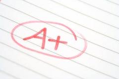 Lehrer-Markierung Lizenzfreie Stockfotos