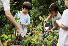 Lehrer- und Kinderschule, welche die Ökologiegartenarbeit lernt stockfoto