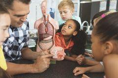 Lehrervertretung zu seinen Schulkindern ein Gehirnteil eines blinden Skelett Wile betrachten sie es in c stockbild