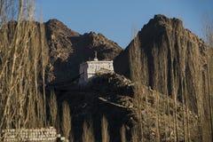 Lehstupa met gestorven boom Stock Foto's