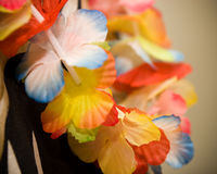 Lei Royalty Free Stock Image