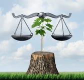 Lei do ambiente e justiça da conservação Fotografia de Stock Royalty Free