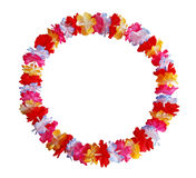 Lei Flower Royalty Free Stock Images