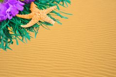 Lei on Golden Sand Ripples Stock Image