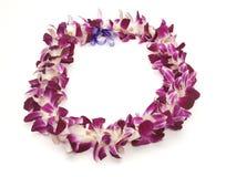 lei hawajczyków Zdjęcia Stock