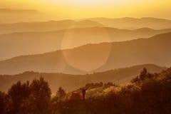 Lei un'alba in montagne Immagine Stock