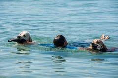 Leibwächterhunde und -lehrer am Strand Lizenzfreie Stockbilder