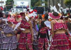 Leicester-karibischer Karneval, Großbritannien 2010 Lizenzfreie Stockfotos