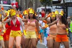 Leicester-karibischer Karneval, Großbritannien 2010 Stockbild