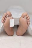 Leiche an einem Leichenschauhaus Stockbilder