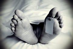 Leiche mit einem leeren Zehentag, im Monochrom Lizenzfreies Stockbild