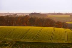 Leicht Rolling Hills Ackerland von Deutschland Europa Stockbild