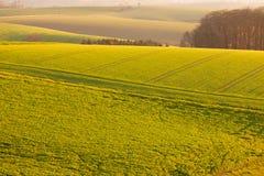 Leicht Rolling Hills Ackerland von Deutschland Europa Stockfotos