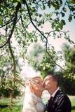 Leicht voll von den stilvollen netten jungen Paaren der Liebe auf dem Hintergrund Lizenzfreie Stockfotografie