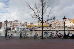 Leiden Royaltyfri Foto