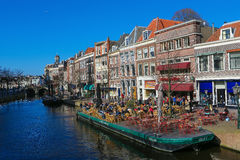 Leiden Royalty Free Stock Photos