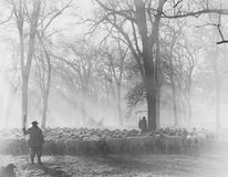Leidend de Troep - sheepherders op het werk (Alle afgeschilderde personen leven niet langer en geen landgoed bestaat Th van lever royalty-vrije stock foto