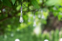 LEIDENE verlichting in druppeltjevorm het hangen in een groene struik stock fotografie