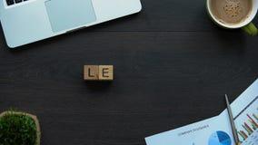 Leiderswoord van kubussen, wijze persoon met capaciteit wordt gemaakt die te bevelen en te controleren stock videobeelden