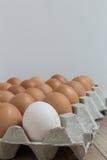 Leidingsconcept: Het witte ei is opmerkelijk van de groep  Stock Foto's