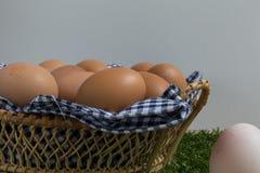 Leidingsconcept: Het witte ei is opmerkelijk van de groep  Royalty-vrije Stock Afbeeldingen