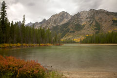 Leigh Lake Stock Foto's