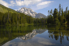 Leigh Lake Reflection Stock Afbeelding