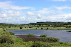Leighton Moss R S P B reserva natural, Silverdale fotos de stock