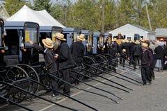 Leilão do transporte de Amish no Condado de Lancaster fotos de stock