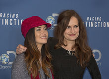 Leilani Munter:  Posing in the Fast Lane Royalty Free Stock Photo