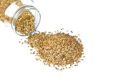 Leinsamen oder Flex Seeds, die aus einem Glasgefäß gießen Lizenzfreie Stockfotos