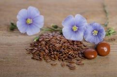 Leinsamen, Schönheitsblume und Pillen woooden an Hintergrund Lizenzfreie Stockbilder