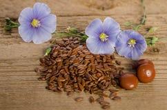 Leinsamen, Schönheitsblume und Pillen woooden an Hintergrund Lizenzfreie Stockfotografie