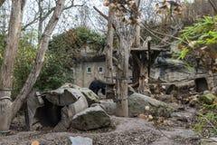 Leipzig-Zoo-Lippenbär-Schlucht lizenzfreies stockbild