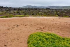 Leirhnjukur - Clay Hill lavafält i norr Island arkivbild